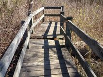 Ξύλινες άκρες γεφυρών σε μια δέσμη της βούρτσας Στοκ Εικόνες