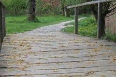 Ξύλινες γέφυρα και πορεία των πετρών στοκ εικόνες