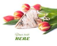 Ξύλινες καρδιά και τουλίπες σημύδων στο λευκό Στοκ εικόνα με δικαίωμα ελεύθερης χρήσης