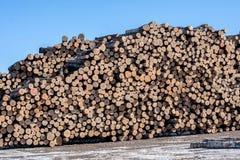Ξυλείες που συσσωρεύονται ξύλινες Στοκ Φωτογραφίες