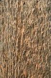 Ξύλινη ανασκόπηση παλαιός ξύλινος στενός επάνω πινάκων Στοκ Εικόνες