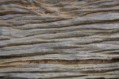 Ξύλινη ανασκόπηση σύστασης σανίδων καφετιά παλαιά σύσταση ξύλινη Στοκ Φωτογραφία