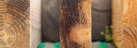 Ξύλινη ανασκόπηση Το δέντρο χτυπά τη σύσταση Στοκ εικόνα με δικαίωμα ελεύθερης χρήσης