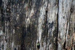 Ξύλινη ανασκόπηση Στοκ Εικόνα