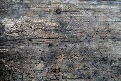 Ξύλινη ανασκόπηση Στοκ φωτογραφίες με δικαίωμα ελεύθερης χρήσης