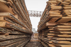 Ξύλινη βιομηχανία ξυλείας Στοκ Φωτογραφίες