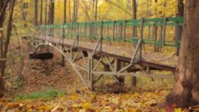 Ξύλινη γέφυρα αψίδων, αριστερή άποψη, μπροστινή εστίαση ραφιών απόθεμα βίντεο