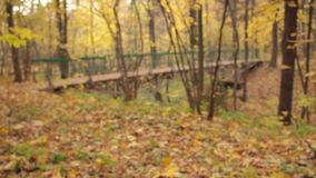Ξύλινη γέφυρα αψίδων, οπίσθια εστίαση ραφιών απόθεμα βίντεο