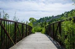 Ξύλινη γέφυρα για πεζούς σε μια περιοχή συντήρησης φύσης Στοκ Εικόνες