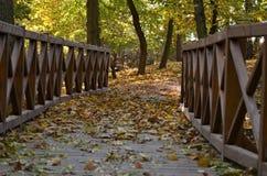 Ξύλινη γέφυρα για πεζούς στο πάρκο φθινοπώρου Στοκ Εικόνες