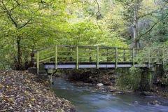 Ξύλινη γέφυρα για πεζούς, Holywell Dene, Northumberland στοκ φωτογραφία