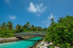 Ξύλινη γέφυρα πέρα από το ρεύμα στις Μαλδίβες Στοκ Φωτογραφία