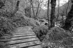 Ξύλινη γέφυρα πέρα από το ρεύμα στους βράχους Hardcastle Στοκ φωτογραφία με δικαίωμα ελεύθερης χρήσης