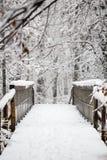 Ξύλινη γέφυρα ποδιών που καλύπτεται στο χιόνι σε ένα χειμερινό δάσος Στοκ Εικόνες