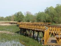 Ξύλινη γέφυρα ποδιών Στοκ εικόνες με δικαίωμα ελεύθερης χρήσης
