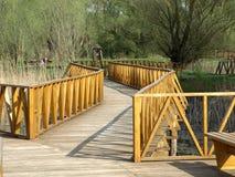 Ξύλινη γέφυρα ποδιών Στοκ φωτογραφίες με δικαίωμα ελεύθερης χρήσης