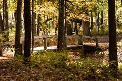 Ξύλινη γέφυρα ποδιών στοκ φωτογραφία