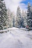 Ξύλινη γέφυρα σε έναν δασικό δρόμο που καλύπτεται στο χιόνι Στοκ Φωτογραφία