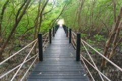 Ξύλινη γέφυρα σε φυσικό Στοκ εικόνα με δικαίωμα ελεύθερης χρήσης