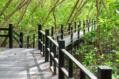 Ξύλινη γέφυρα σε φυσικό Στοκ φωτογραφίες με δικαίωμα ελεύθερης χρήσης