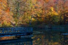 Ξύλινη γέφυρα στην κεντρική λίμνη του Ermitage Arlesheim Στοκ εικόνες με δικαίωμα ελεύθερης χρήσης