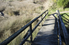 Ξύλινη γέφυρα στη χλόη Στοκ εικόνα με δικαίωμα ελεύθερης χρήσης