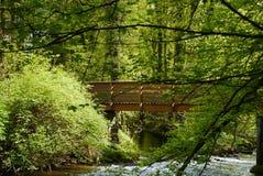 Ξύλινη γέφυρα στο δάσος Στοκ Εικόνα