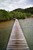 Ξύλινη γέφυρα στο νησί μαγγροβίων Στοκ φωτογραφίες με δικαίωμα ελεύθερης χρήσης