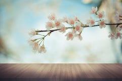 Ξύλινη επιτραπέζια κορυφή στο υπόβαθρο λουλουδιών Στοκ Εικόνα