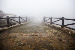 Ξύλινη διάβαση πεζών που χάνεται στην ομίχλη Στοκ Φωτογραφία