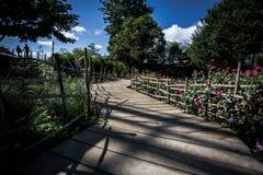 Ξύλινη διάβαση στον κήπο Στοκ Εικόνες