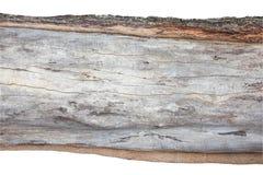 Ξύλινη διατομή, φλοιός υποβάθρων και ξύλινη σύσταση στο λευκό Στοκ φωτογραφία με δικαίωμα ελεύθερης χρήσης