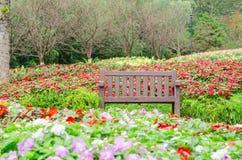 Ξύλινη καρέκλα στον κήπο και τα ζωηρόχρωμα λουλούδια Στοκ φωτογραφία με δικαίωμα ελεύθερης χρήσης