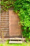 Ξύλινη καφετιά πόρτα που πλαισιώνεται από τα φύλλα σταφυλιών - υπόβαθρο φύσης Στοκ Εικόνες