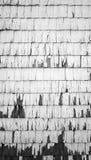 Ξύλινη μονοχρωματική κατακόρυφος σύστασης τοίχων Στοκ Εικόνες
