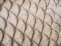 Ξύλινη μορφή ψαριών χάραξης Στοκ φωτογραφία με δικαίωμα ελεύθερης χρήσης