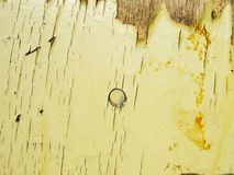 Ξύλινη μπεζ σύσταση επιφάνειας με το παλαιό χρώμα Στοκ φωτογραφία με δικαίωμα ελεύθερης χρήσης