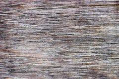 Ξύλινη ξύλινη σύσταση υποβάθρου Στοκ εικόνα με δικαίωμα ελεύθερης χρήσης