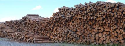 Ξύλινη περικοπή δασονομίας κατάληψης κατασκευής ξυλείας σωρών ναυπηγείων ξυλείας Στοκ Φωτογραφία