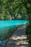 Ξύλινη πορεία δίπλα στη λίμνη στοκ φωτογραφίες με δικαίωμα ελεύθερης χρήσης