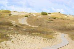 Ξύλινη πορεία περπατήματος στους νεκρούς αμμόλοφους σε Neringa, Λιθουανία Στοκ Φωτογραφία