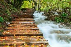Ξύλινη πορεία στο εθνικό πάρκο Plitvice το φθινόπωρο Στοκ Εικόνες