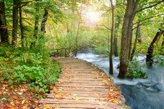 Ξύλινη πορεία στο εθνικό πάρκο Plitvice το φθινόπωρο Στοκ φωτογραφίες με δικαίωμα ελεύθερης χρήσης