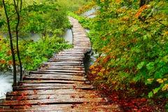 Ξύλινη πορεία στο εθνικό πάρκο Plitvice το φθινόπωρο Στοκ Εικόνα