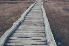Ξύλινη πορεία στο φυσικό εθνικό πάρκο Στοκ εικόνα με δικαίωμα ελεύθερης χρήσης