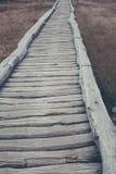 Ξύλινη πορεία στο φυσικό εθνικό πάρκο Στοκ Εικόνες