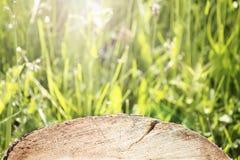 Ξύλινη προοπτική επιφάνειας κούτσουρων στο θολωμένο πράσινο υπόβαθρο λιβαδιών Στοκ φωτογραφία με δικαίωμα ελεύθερης χρήσης