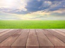 Ξύλινη σανίδα και φυσικός τομέας χλόης με το υπόβαθρο ουρανού Στοκ Εικόνες