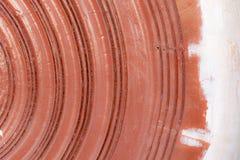 Ξύλινη σύσταση Η επένδυση επιβιβάζεται στον τοίχο Ξύλινο σχέδιο υποβάθρου Στοκ Φωτογραφίες