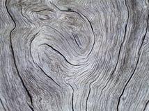 Ξύλινη σύσταση με τη greyscale φωτογραφία καμπυλών Στοκ Εικόνες